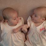 不妊治療で双子を高齢出産した兄嫁。仕事を辞めてベビーシッターをタダでやれと言ってきた。